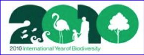 International Year of Biodiversity – 2010