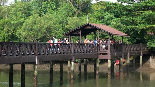 Blog Action Day – The Sungei Buloh Wetland Reserve