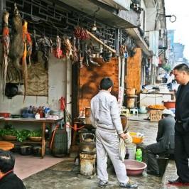 Pheasant galore along the road to Zhangjiajie, China