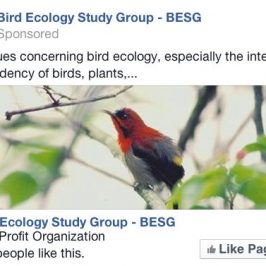 Follow BESG on Facebook…