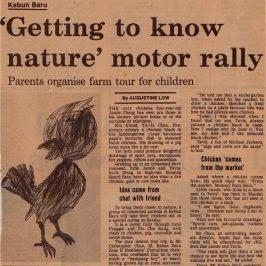 How will the next generation of kindergarten children sketch a chicken?
