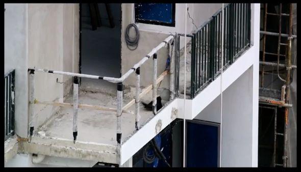Peregrine Falcon having a dust-bath in a high-rise apartment