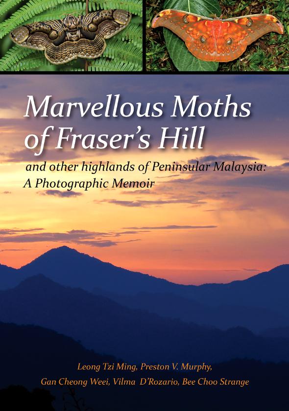 Marvellous Moths of Fraser's Hill