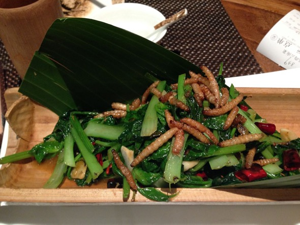 Mealworms as a garnish in a vegetable dish (Credit: Wikimedia Commons)