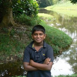 Saving MacRitchie forest: A youngster's view