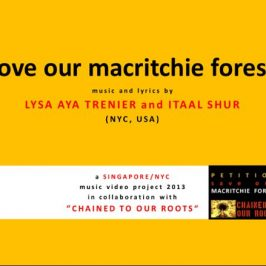 "Save MacRitchie Forest: 20. ""Love MacRitchie Forest"" song debut and radio interview"