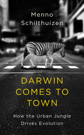 darwin comes to town 5-2